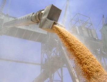 Спецтема: Налоговики арестовали партии зерна в трех портах Украины