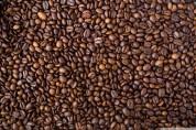 Путь кофе: Как обрабатывают кофейные грузы в Бременском порту