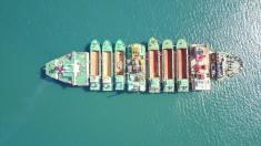 9 в 1: Дноуглубительный флот для порта Южный на борту ZHEN HUA 29 (фото)